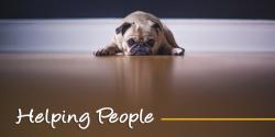 Een schone vloer? Met deze 3 tips is het echt super simpel! #helpingpeople